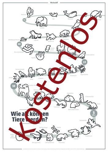 Vorschaugrafik für das kostenlose Arbeitsblatt Wie alt können Tiere werden? (Ausmalversion) von Lehrermaterial.de