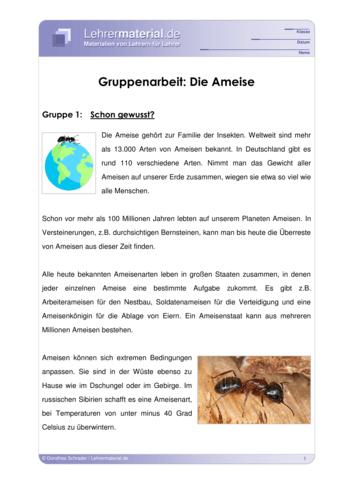 Detailseite für das  Arbeitsblatt Gruppenarbeit: Die Ameise öffnen
