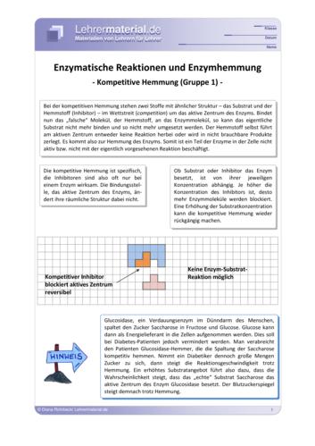 Vorschaugrafik 1 für das  Arbeitsblatt Enzymatische Reaktionen und Enzymhemmung von Lehrermaterial.de.