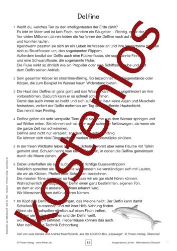 Vorschaugrafik 1 für das kostenlose Arbeitsblatt Kooperatives Lernen: Delfine von Lehrermaterial.de.
