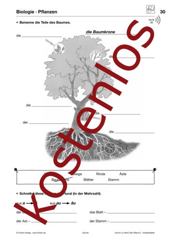 Vorschaugrafik 1 für das kostenlose Arbeitsblatt Komm zu Wort: Pflanzen von Lehrermaterial.de.
