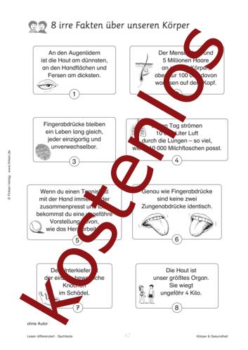Vorschaugrafik 1 für das kostenlose Arbeitsblatt 8 irre Fakten über unseren Körper von Lehrermaterial.de.