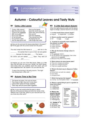 Vorschaugrafik 1 für das  Arbeitsblatt Autumn -  Colourful Leaves and Tasty Nuts  von Lehrermaterial.de.
