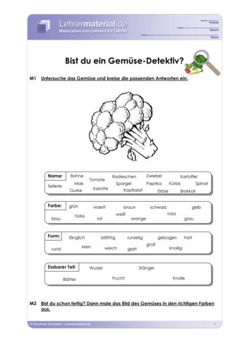 Vorschaugrafik 1 für das  Arbeitsblatt Bist du ein Gemüse-Detektiv? von Lehrermaterial.de.